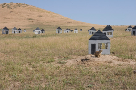 Outskirts: The Development of a Prairie Dog Town